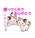 三毛猫ツインズ 毎日優しいスタンプ(個別スタンプ:37)