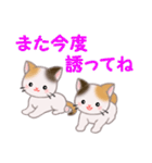 三毛猫ツインズ 毎日優しいスタンプ(個別スタンプ:38)