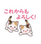 三毛猫ツインズ 毎日優しいスタンプ(個別スタンプ:40)