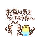 夏・天気✨やさしいスタンプ(個別スタンプ:24)