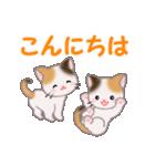 三毛猫ツインズ 毎日使う言葉(個別スタンプ:2)