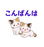 三毛猫ツインズ 毎日使う言葉(個別スタンプ:3)