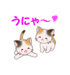 三毛猫ツインズ 毎日使う言葉(個別スタンプ:8)