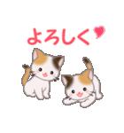 三毛猫ツインズ 毎日使う言葉(個別スタンプ:11)