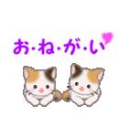 三毛猫ツインズ 毎日使う言葉(個別スタンプ:12)