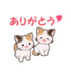 三毛猫ツインズ 毎日使う言葉(個別スタンプ:13)