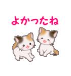三毛猫ツインズ 毎日使う言葉(個別スタンプ:15)