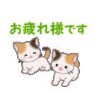 三毛猫ツインズ 毎日使う言葉(個別スタンプ:17)