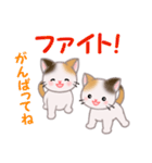 三毛猫ツインズ 毎日使う言葉(個別スタンプ:18)