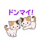 三毛猫ツインズ 毎日使う言葉(個別スタンプ:20)