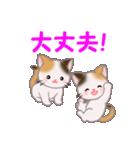 三毛猫ツインズ 毎日使う言葉(個別スタンプ:22)