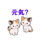 三毛猫ツインズ 毎日使う言葉(個別スタンプ:23)