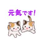 三毛猫ツインズ 毎日使う言葉(個別スタンプ:24)