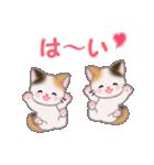三毛猫ツインズ 毎日使う言葉(個別スタンプ:25)