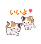 三毛猫ツインズ 毎日使う言葉(個別スタンプ:26)