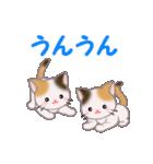 三毛猫ツインズ 毎日使う言葉(個別スタンプ:27)