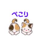 三毛猫ツインズ 毎日使う言葉(個別スタンプ:30)
