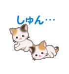 三毛猫ツインズ 毎日使う言葉(個別スタンプ:31)