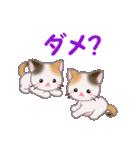 三毛猫ツインズ 毎日使う言葉(個別スタンプ:34)