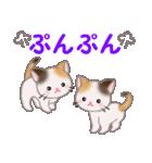 三毛猫ツインズ 毎日使う言葉(個別スタンプ:36)
