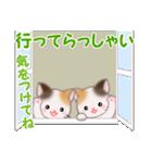 三毛猫ツインズ 毎日使う言葉(個別スタンプ:37)