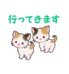 三毛猫ツインズ 毎日使う言葉(個別スタンプ:38)