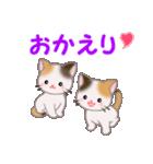 三毛猫ツインズ 毎日使う言葉(個別スタンプ:40)