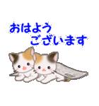 三毛猫ツインズひょっこり(丁寧)(個別スタンプ:1)