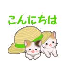 三毛猫ツインズひょっこり(丁寧)(個別スタンプ:2)