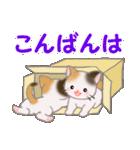 三毛猫ツインズひょっこり(丁寧)(個別スタンプ:3)