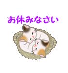 三毛猫ツインズひょっこり(丁寧)(個別スタンプ:4)
