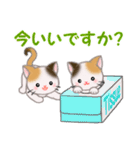 三毛猫ツインズひょっこり(丁寧)(個別スタンプ:5)
