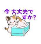 三毛猫ツインズひょっこり(丁寧)(個別スタンプ:6)