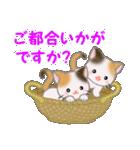 三毛猫ツインズひょっこり(丁寧)(個別スタンプ:7)