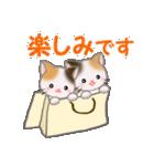 三毛猫ツインズひょっこり(丁寧)(個別スタンプ:17)