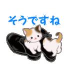 三毛猫ツインズひょっこり(丁寧)(個別スタンプ:19)