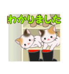 三毛猫ツインズひょっこり(丁寧)(個別スタンプ:20)