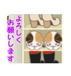 三毛猫ツインズひょっこり(丁寧)(個別スタンプ:24)