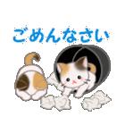 三毛猫ツインズひょっこり(丁寧)(個別スタンプ:27)