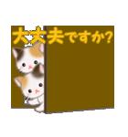 三毛猫ツインズひょっこり(丁寧)(個別スタンプ:29)