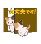 三毛猫ツインズひょっこり(丁寧)(個別スタンプ:30)
