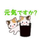三毛猫ツインズひょっこり(丁寧)(個別スタンプ:31)
