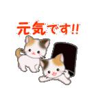 三毛猫ツインズひょっこり(丁寧)(個別スタンプ:32)