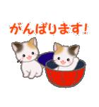 三毛猫ツインズひょっこり(丁寧)(個別スタンプ:33)
