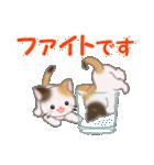 三毛猫ツインズひょっこり(丁寧)(個別スタンプ:35)