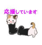 三毛猫ツインズひょっこり(丁寧)(個別スタンプ:36)