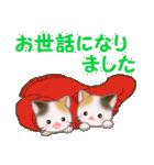 三毛猫ツインズひょっこり(丁寧)(個別スタンプ:38)