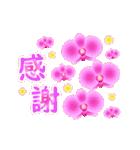 動く♪ランランお花を贈ろう(個別スタンプ:24)