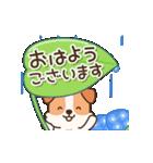 陽気なジャックわんこ2(夏)(個別スタンプ:02)