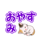 ちび三毛猫 よく使うでか文字(個別スタンプ:5)